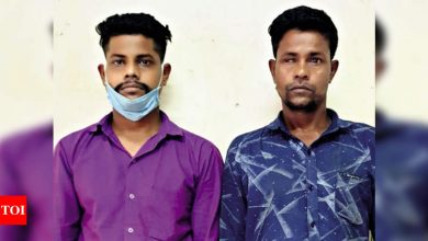 Photo of Ahmedabad: Brothers kill, rob sister after Rakhi | Ahmedabad Information