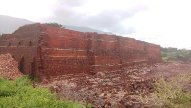 Photo of NGT directs air pollution management our bodies to review impression of brick kilns on MMR air high quality – india information